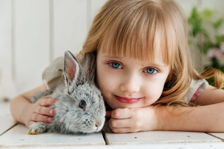 """Pet – Therapy: l'amico a """"4 zampe"""" che si prende cura di noi! Scopriamo insieme la Teoria di Levinson!"""