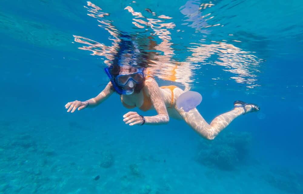 SOS meduse: come trattare una puntura di medusa